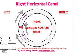 The fluid keeps moving for a brief amoutn of time which is why get dizziness.      (Head stabilizaton following continued mvoement results in continued SSC stimulation past roation, head velocity = zero; acceleration = negative)