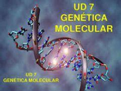 Defina genética: