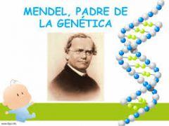 Gregor Mendel, un monje austriaco, se dedicaba al cuidado de las plantas y empezó a experimentar con ellas.