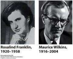 Maurice Wilkins y Rosalind Franklin.