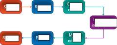label this diagram of a reflex arc