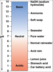 Water can split into H+ and OH–