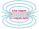 -Magnetic fields are always closed loops. -They emerge from the north pole and enter the south pole.