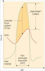 - Maximaler Druckgradient → grösster systolischer Druckgradient (zum selben Zeitpunkt gemessen) - mittlerer Druckgradient (klinisch bedeutenster) → während Systole gemessen - Peak-to-Peak-Gradient → Differenz der maximal gemessenen Druckgr...
