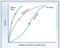 """""""Compliance is higher during expiration  Compliance : lung intrinsic compliance + surface tension at air-liquid interface"""""""