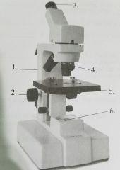 A. arm B. base C. coarse adjustment D. diaphragm       adjustment  E. eyepiece F. fine adjustment G. illuminator H. object I. stage  J. stage clip