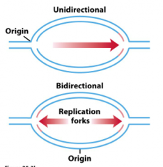 the basics of replication
