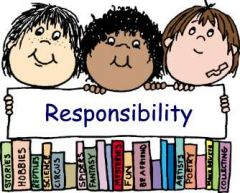 What are responsibilities?