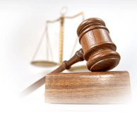 Laws established by the outcome of former cases.