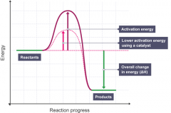 The lower the activation energy of the reaction by providing an alternative route for the reaction to follow - the alternative route has a lower energy.