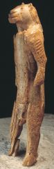 Human with Feline Head