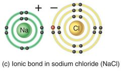 Cation = positive ion (lost e-)  Anion = negative ion (gained e-)