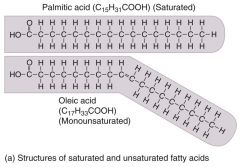 Saturated = only single bonds between carbon atomsUnsaturated = one or more double bonds between carbon atoms