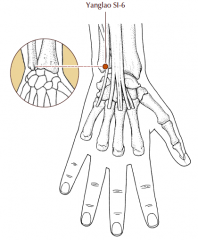 When the palm of the hand is placed on the chest, this point is located on the dorsal aspect of the head of the ulna, in a cleft level with and to the radial side of the high point of the styloid process of the ulna.