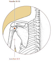 On the posterior aspect of the shoulder, in the depression inferior to the scapular spine, directly superior to the posterior axillary crease when the arm hangs in the adducted position.