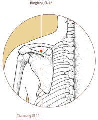 In the center of the suprascapular fossa, directly above SI-11, in a depression formed when the arm is raised.