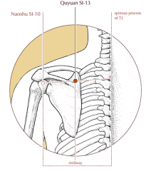 In the tender depression superior to the medial end of the scapular spine, midway between SI-10 and the spinous process of T2.