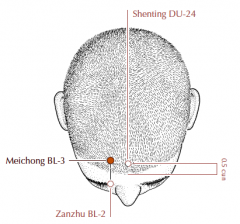 Directly superior to BL-2, 0.5 cun within the anterior hairline, level with Du-24.