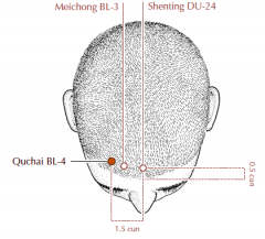 0.5 cun within the anterior hairline, 1.5 cun lateral to Du-24 and one third of the distance between Du-24 and St-8.