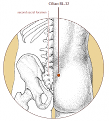 Over the second posterior sacral foramen.