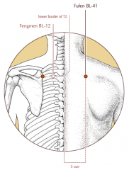 3 cun lateral to the midline, level with the lower border of the spinous process of T2 and level with BL-12.