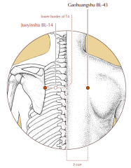 3 cun lateral to the midline, level with the lower border of the spinous process of T4 and level with BL-14.
