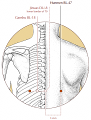 3 cun lateral to the midline, level with the lower border of the spinous process of T9 and level with BL-18.