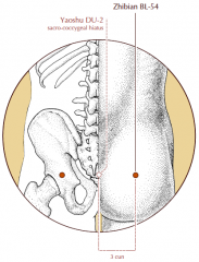 On the buttock, in the depression 3 cun lateral to the sacro-coccygeal hiatus.