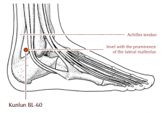 Behind the ankle joint, in the depression between the prominence of the lateral malleolus and the Achilles tendon.
