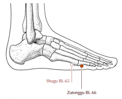 On the lateral side of the foot, in the depression anterior and inferior to the fifth metatarso-phalangeal joint.