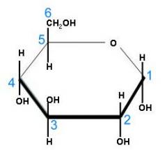 Glucosidos