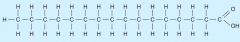 A saturated fatty acid