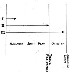the range of available joint play, up to the point of tissue resistance, but not into a stretch