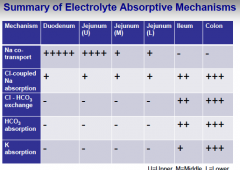 Summary of electrolyte absorptive mechanisms... Where are transporters/absorption located?