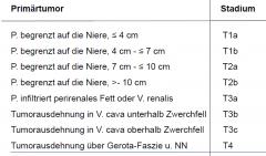 Gerota Faszie = Fascia renalis (Fettkapselbegrenzung)  auf jeden Fall offen nephrektomieren ab T3