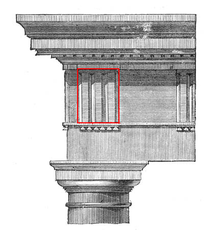Rectangular block between the metopes of a Doric frieze. Identified by three carved vertical grooves, which approximate the appearance of the end of wooden beams.
