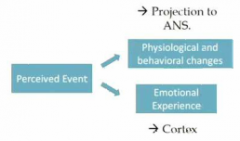 - Thalamic/hypothalamic theory of emotion   -Cannon and Bard proposed a hypothalamic theory of