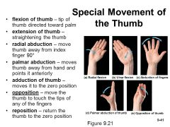 Reposition of the Thumb