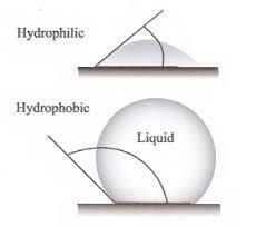 hydrofillic layer
