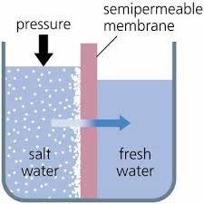 semipermeable membrane