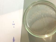 -SUBFLO CRUSTACEA    -CLASE MAXILOPODA       -Subclase Copepoda