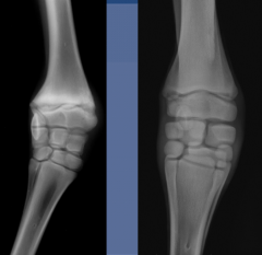 13 degree angle of rotation