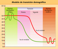 Transición demográfica