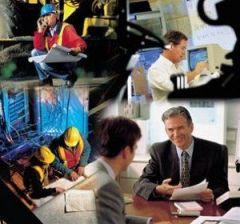 ¿Con qué otro nombre se conoce a la división del trabajo característica del sistema capitalista?