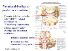 A stroke of the internal auditor artery would cause vertigo and ipsilateral deafness.