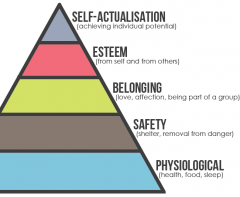 Hierarchy of needs People need basics first and have specific needs.