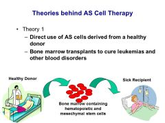 Theory 1: We can actually do this today to help cure diseases  Immunogenicity Because this method uses donor derived stem cells, the recipient must take immuno-suppressants to prevent transplant rejection  Donor Availability Bone marrow harvest is a
