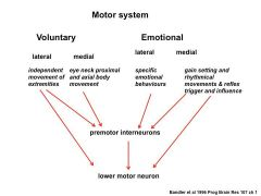 emotional aspects built into the motor systems (e.g aggressive walk or smooth...)