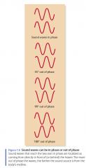 het faseverschil tussen de oren.   Elk geluid golf heeft fasen met twee opeenvolgende pieken van 360 graden uit elkaar.   Figuur 7.8 toont geluidsgolven die in fase en 45 graden, 90 graden of 180 graden uit fase. Als een geluid ontstaat aan de zijkant