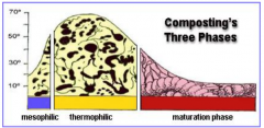 1. mesophilic, thermophilic and maturation phases